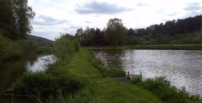 See des Vereins